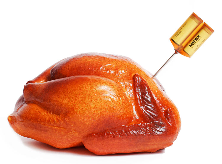 Perfectly cooked turkey with Wyze Temp Plus meat thermometer
